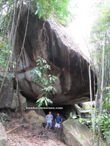 Borneo, amorphophallus hewittii, nature, malaysia, kuching, sarawak, peninjau lama, tallest flower, trekking, stinky flower, mountain serumbu, james brooke cottage