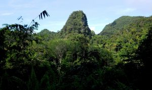 antimony, kampung seropak, sarawak, borneo, malaysia, tegora mines, railway, adventure, kuching, cave
