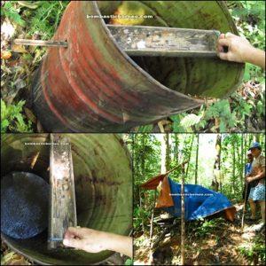 Borneo, Kalimantan barat, siding, patie cave, rock climbing, bird nest, swiflet, adventure, mountain, dayak, land, bidayuh, jungle, tuak, ijok, palm, local wine, transborder, kampung padang pan, gumbang