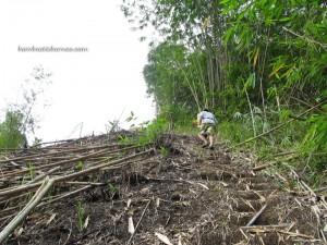 Nonstop going uphill