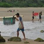 Paloh, Kalimantan Barat, Beach, Indonesia, Teluk Melano, Sarawak, Malaysia, Jellyfish factory, fishing village, teluk melano, transborder,