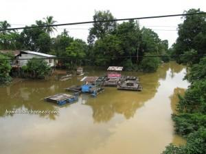 Bengkayang, Kalimantan Barat, West Kalimantan, Borneo, village, Bupati, Hakka,