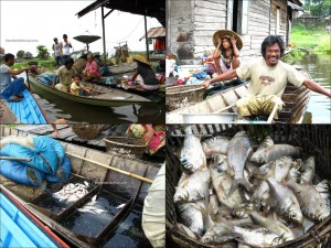 Danau Jempang, adventure, belian house, Borneo, bugis, East Kalimantan, Fishing, hard wood, homestay, Indonesia, Kalimantan Timur, lake, Mahakam river, outdoor, fishing, Tanjung Isuy, village