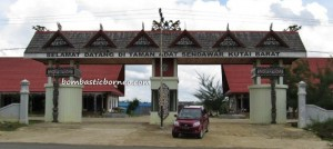 East Kalimantan, Indonesia, Dayak Benuaq, Borneo, outdoors, Tourism, authentic, ethnic, traditional, indigenous, native, Melak, Kutai Barat, West Kutai, Culture, Tonyooi, Tunjung, Aoheng, Melayu, Bahau, Kenyah, Lamin, Rumah Panjang, Barong Tongkok, tribe