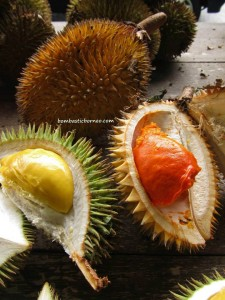 antique, Betong, cannon, exotic delicacy, exotic fruit, mango, mangoes, nature, rambutan, traditional, jungle, wild ginger,