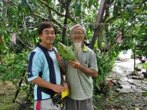 Betong, Durian Isu, Durian Pakan, exotic fruits, mangoes, nature, rambutan, traditional, wild, jungle, Dabai, Local Olive,