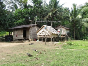 adventure, authentic village, culture, dayak Bidayuh, gawai event, indigenous, Jagoi Babang, native, ngabang, Nyobeng Sebujit, outdoor, paddy harvest festival, traditional, tribal, tribe,