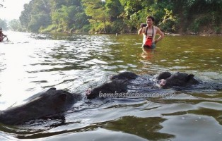 adventure, authentic, Bidayuh tribe, Speedboat ride, culture, Desa Pala Pasang, Entikong, fresh water fishing, indigenous, native, nature, outdoor, Sanggau, Sungai Sekayam River, tribe, tribal village, transborder,