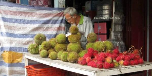 antique, Betong, Bunga Kantan, cannon, dabai, Durian Isu Pakan, jungle fruits, local olive, mangoes, nature, rambutan, wild ginger,