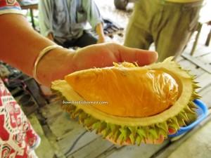 Borneo, Durian farm, exotic delicacy, hiking, jungle, Kuching, Sarawak, nature, Nutritious, outdoors, Pasir Pandak, pasir panjang, rainforest, Santubong, Tourism, tourist attraction, trekking,