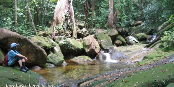 air terjun, gully, Gunung Santubong, hiking, jungle, Kuching, malaysia, rainforest, Santubong National Park, Tourism, tourist attraction, travel guide, trekking, Waterfall