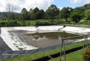 Design, development, fish breeder, IDEAS, Innovation, Invention, research centre, Malaysia, Tarat Agriculture Station, UITM, Universiti Teknologi MARA, farming
