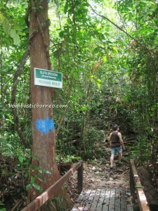 adventure, air terjun, Borneo, gully, Gunung Santubong, hiking, Kuching, malaysia, outdoors, rainforest, Santubong National Park, tourist attraction, travel guide, trekking, Waterfall,
