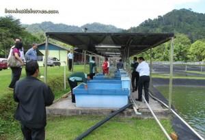 Design, development, fish breeder, fish farming, fresh water fish, Innovation, Invention, malaysia, research center, Sarawak, Serian, Universiti Teknologi MARA