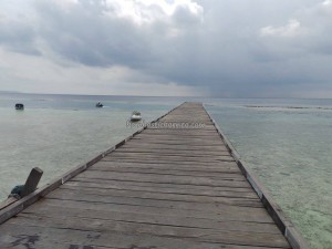 Berau, Derawan Archipelago, dive center, diving site, green sea turtle, marine life, nature, Obyek wisata, outdoors, pasir putih, Pulau, Sandy white beaches, tourist attraction, guide, underwater, village