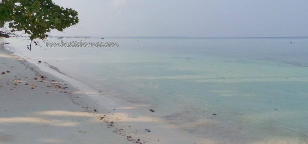 Berau, Derawan Archipelago, dive center, diving site, green sea turtle, marine life, nature, Obyek wisata, outdoors, pasir putih, Pulau, Sandy white beaches, tourist attraction, guide, underwater, village