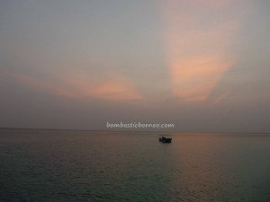 Berau, Derawan Archipelago, dive center, diving spot, green sea turtle, Paradise Island Resort, marine life, nature, Obyek wisata, outdoors, pasir putih, Pulau, Tourism, tourist attraction, travel guide, underwater, village