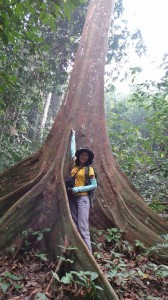 adventure, east kalimantan, ecowisata, hiking, Borneo, Kutai National park, nature, Obyek wisata, orang utan, outdoors, prevab, primary jungle, rainforest, Tourism, tourist attraction, trekking, wild plant, wildlife