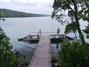 Danau, adventure, Berau, diving spot, hidden paradise, East Kalimantan Timur, Kakaban Island, mangrove forest, Maratua, marine life, Obyek wisata, outdoors, snorkeling, tourist attraction, travel guide, vacation, World Heritage, Ubur ubur