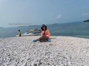 batu karang, Berau, Derawan Archipelago, dive center, east kalimantan timur, holiday, Maratua, marine life, Obyek wisata, outdoors, Pulau, terumbu karang, Tourism, tourist attraction, travel guide, vacation