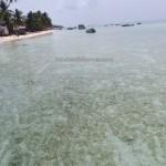 adventure, authentic, Indigenous Bajau, berau, Kampung Bohe Bukut, Derawan Archipelago, diving, snorkeling, fishing village, hidden paradise, nature, Obyek wisata, Pulau, Island, Tourism, travel guide, vacation,