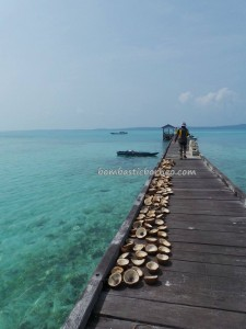 adventure, indigenous Bajau, Berau, Borneo, Derawan Archipelago, east kalimantan timur, authentic, fishing village, Kampung Teluk Alulu, marine life, nature, Obyek wisata, outdoors, Pulau, beaches, Suku Bajo, tourist attraction,