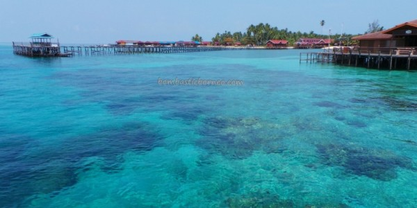 Bajau Fishing village, Celebes Sea, coral, Dive Lodge Resort, Pulau, diving, green sea turtle, hidden paradise, marine life, nature, Obyek wisata, outdoors, snorkeling, tourist attraction, travel guide, underwater, white sandy beaches