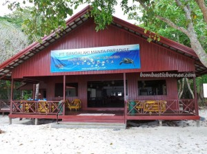 adventure, beach, Berau, Derawan Archipelago, east kalimantan timur, green turtle, hidden paradise, Manta Alfredi, Manta ray, marine life, Obyek wisata alam, outdoors, Pari Hantu, Pulau Sangalaki Island, snorkeling, tourist attraction, vacation