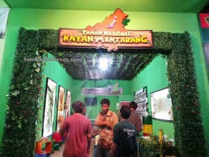 adventure, Kayan Mentarang, culture, Ethnic, HUT, indigenous, North Kalimantan Utara, native, Obyek wisata alam, pesta adat, Suku Dayak, Tourism, tourist attraction, traditional, travel guide, tribe,