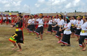 Borneo, event, culture, gong, indigenous, Irau Festival, Muruts, native, North Kalimantan, Obyek wisata, budaya, Orang Ulu, pesta adat, sape music, Suku Dayak, Lundayeh, tourist attraction, tribe,