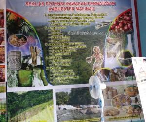 adventure, authentic, Borneo, culture, event, Irau Festival, indigenous, Kalimantan Utara, native, budaya, orang asal, pesta adat, Suku Dayak, Tourism, tourist attraction, tribal, tribe,