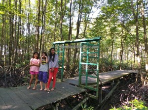 adventure, Borneo, hiking, North Kalimantan Utara, Mangrove Forest Conservation Area, Monyet Belanda, Nature Reserve, obyek wisata alam, outdoors, proboscis monkey, Protected Animals, Tourism, tourist attraction, travel guide, trekking, wildlife,