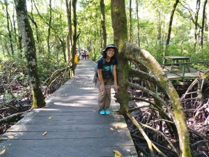 Bekantan, Indonesia, jungle, Kawasan Konservasi Mangrove, Kota, Conservation Park, Monyet Belanda, Reserve, obyek wisata alam, outdoors, proboscis monkey, Protected Animals, Tourism, tourist attraction, travel guide, trekking, wildlife,