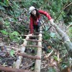 adventure, air terjun, Tanju waterfall, bamboo bridge, Highlands, homestay, jungle, rainforest, Kampung Kiding, village, Sarawak, Borneo Highlands, tour guide, traditional, tribal, tribe, Dayak Bidayuh,