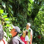 adventure, nature, outdoors, authentic, traditional, Borneo, Malaysia, Kuching, gua, native, destination, exploration, expedition, Tourism, tourist attraction, travel guide, 沙捞越洞穴
