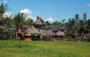 backpackers, Indigenous, culture, native village, tribe, tribal, ritual ceremony, Nyobeng gawai, paddy harvest festival, Desa Hli Buei, Bengkayang, West Kalimantan, Obyek wisata budaya, Rumah Adat Baluk, skull house, traditional, transborder,