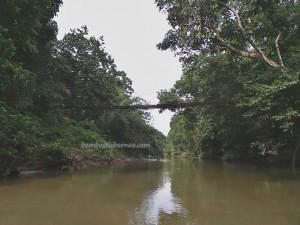Biang river, authentic village, indigenous, backpackers, Desa Bengkawan, Bengkayang, Borneo, Indonesia, gawai dayak, paddy harvest festival, obyek wisata, Tourism, crossborder. transborder, travel guide, native, nature,
