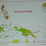 beach, underwater, biodiversity, ecosystems, fisheries, importance, Kuching, malaysia, Sarawak, 沙捞越