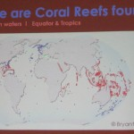 beach, educational talk, fisheries, importance, Kuching, malaysia, marine life, Sarawak,