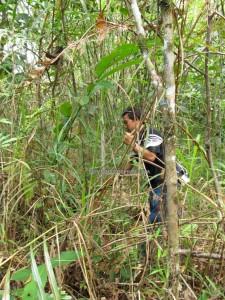 adventure, outdoor, nature, trekking, hiking, jungle survival, rainforest, Sinutut waterfall, native, Borneo Highlands, dayak bidayuh, Kampung Sadir, Kuching, Sarawak, Padawan, travel guide, 沙捞越瀑布