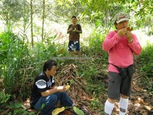 cempedak, nature, hiking, jungle, rainforest, authentic, native, tribe, backpackers, dayak bidayuh, Kampung Sadir, Village, Kuching, Malaysia, Padawan, travel guide, 沙捞越瀑布