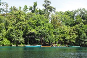 adventure, outdoor, alam, hidden paradise, Labuan Cermin lake, backpackers, destination, Berau, Biduk-Biduk, East Kalimantan, Indonesia, Obyek wisata, Tourism, tourist attraction, travel guide, Useful information, Labuan Kelambu,