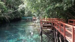 adventure, outdoor, nature phenomenon, alam, hidden paradise, Berau, Biduk-Biduk, Kalimantan Timur, Indonesia, Danau Dua Rasa, Obyek wisata, Tourism, tourist attraction, freshwater, saltwater, Labuan Kelambu, vacation,