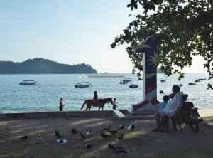 Backpackers. Laut, Pulau Pangkor, Island, Perak, Malaysia, Sea View Resort, Oriental pied hornbill, 犀鸟, destination, family holiday, fishing village, Tourism, tourist attraction, travel guide,