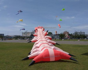 International, backpackers, Bintulu Development Authority, Dual Line Stunt Kites, double delta kite, sport kite, event, Malaysia, Old Bintulu Airport, outdoors, Tourism, tourist attraction, travel guide, 婆罗洲国际风筝节, 民都鲁沙捞越