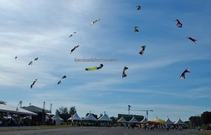 Layang-Layang antarabangsa, backpackers, Bintulu Development Authority, championship, double delta kite, sport kite, Malaysia, Old Bintulu Airport, outdoors, Tourism, tourist attraction, travel guide, 婆罗洲国际风筝节, 民都鲁沙捞越