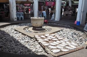 Island, destination, pier, fishing village, Oriental pied hornbill, 犀鸟, Tourism, tourist attraction, travel guide, 旅游景点, 邦咯島, 马来西亚, 霹靂州