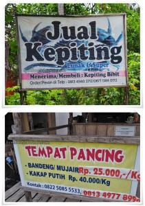 Sarang Tiung, kepiting soka, soft shell crab, Pantai Gedambaan, Kalsel, Pulau Laut, Island, objek wisata, tourism, tourist attraction, travel guide, fishing village, 南加里曼丹, 婆罗州