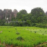 Limestone Hills, caves, hamparan bukit kapur, Karst topography, adventure, nature, Cantung, Borneo, Indonesia, Kotabaru, South Kalimantan, wisata Alam, Tourism, tourist attraction, travel guide,