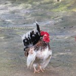 mini zoo, Gambang, Recreational, nature, outdoors, activities, team building, family holiday, vacation, fruit orchard, chalets, accommodation, tourist attraction, travel guide, Useful information